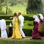 Tea plantation Trek